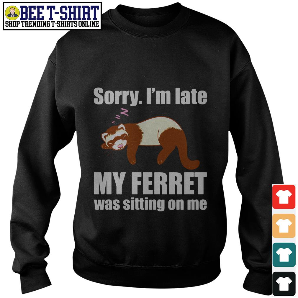 Sloth sorry I'm late my ferret was sitting on me Sweater